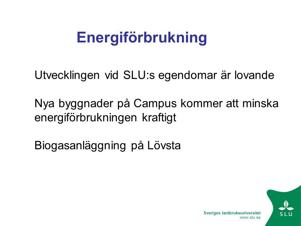 Sveriges lantbruksuniversitet www.slu.se Energiförbrukning Utvecklingen vid SLU:s egendomar är lovande Nya byggnader på Campus kommer att minska energiförbrukningen kraftigt Biogasanläggning på Lövsta