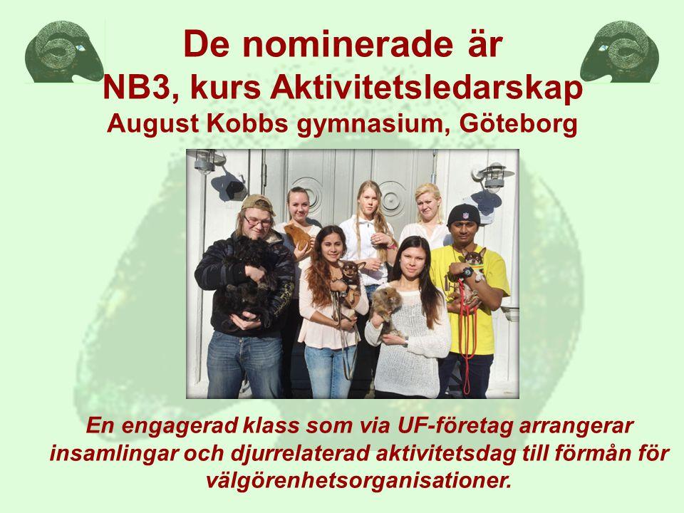 De nominerade är NB3, kurs Aktivitetsledarskap August Kobbs gymnasium, Göteborg En engagerad klass som via UF-företag arrangerar insamlingar och djurrelaterad aktivitetsdag till förmån för välgörenhetsorganisationer.