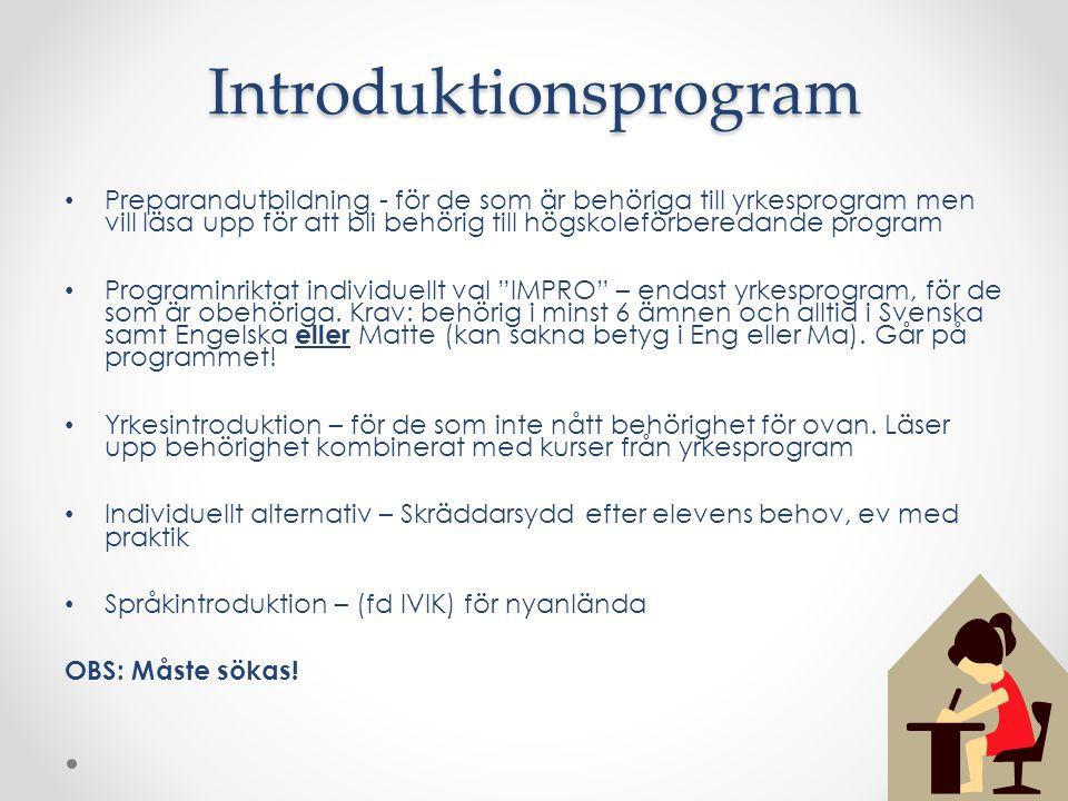 Preparandutbildning - för de som är behöriga till yrkesprogram men vill läsa upp för att bli behörig till högskoleförberedande program Programinriktat