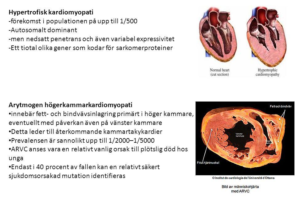 Hypertrofisk kardiomyopati -förekomst i populationen på upp till 1/500 -Autosomalt dominant -men nedsatt penetrans och även variabel expressivitet -Et