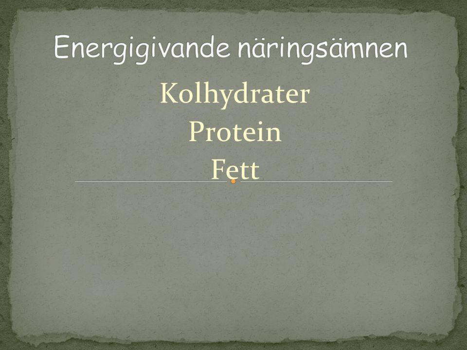 Kolhydrater Protein Fett