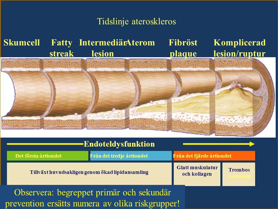 Tidslinje ateroskleros SkumcellFatty streak Intermediär lesion AteromFibröst plaque Komplicerad lesion/ruptur Endoteldysfunktion Anpassad från Stary HC et al.