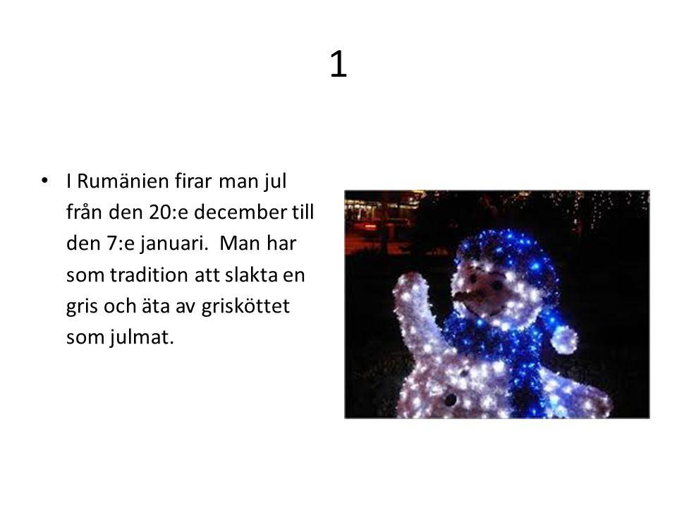 1 I Rumänien firar man jul från den 20:e december till den 7:e januari. Man har som tradition att slakta en gris och äta av grisköttet som julmat.