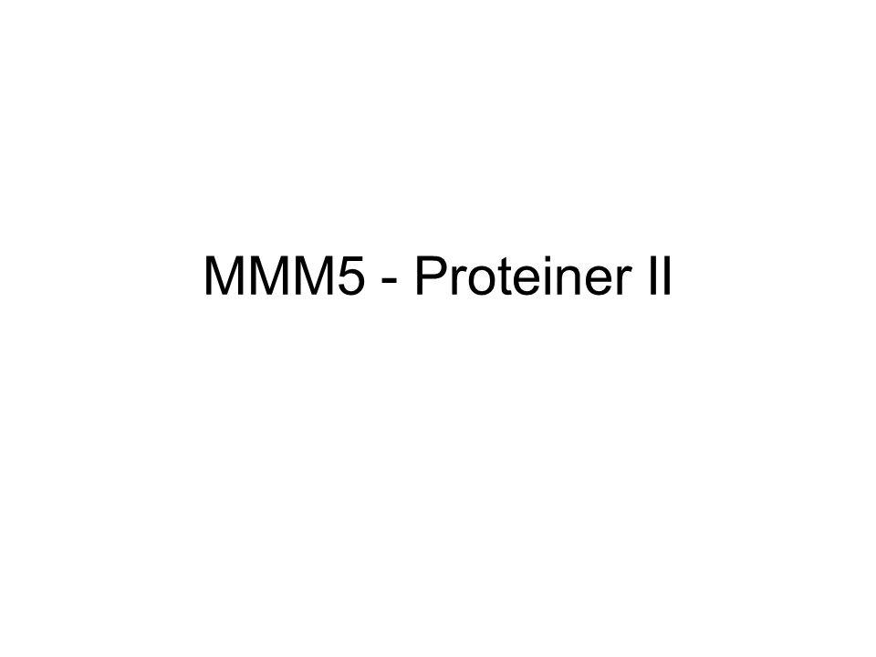 MMM5 - Proteiner II