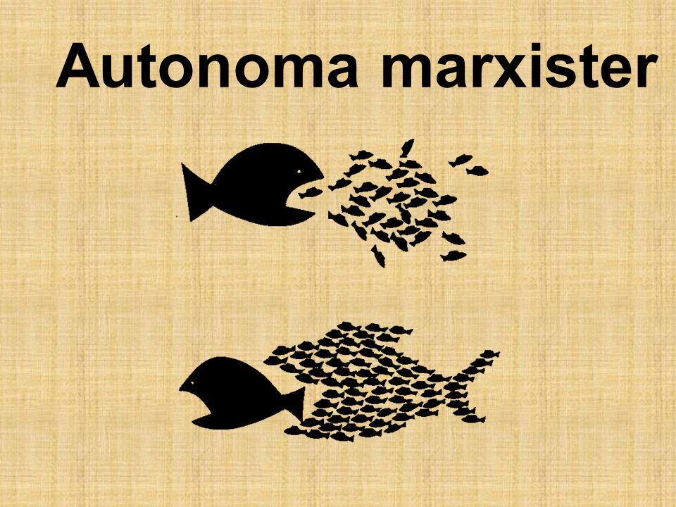 Autonoma marxister
