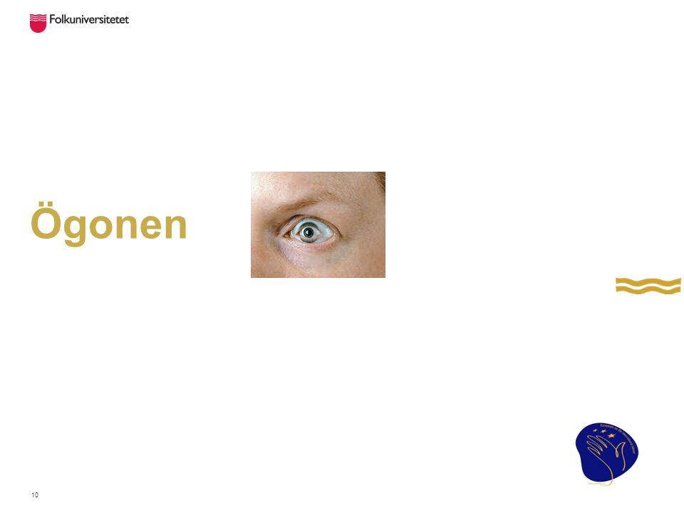 Ögonen 10