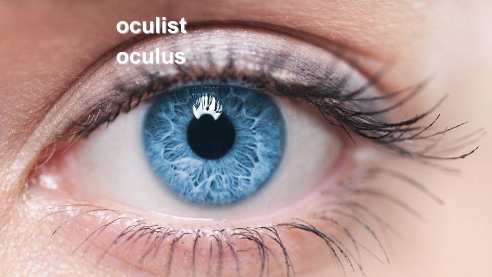oculistoculus