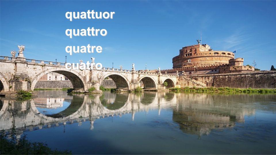 quattuorquattroquatrecuatro
