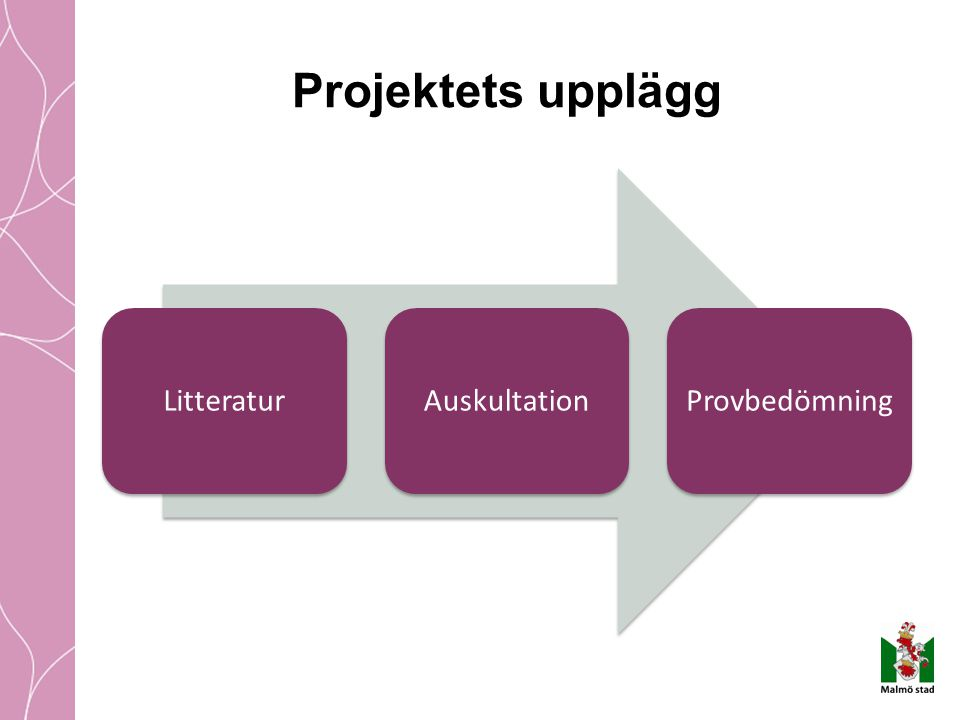 Projektets upplägg LitteraturAuskultationProvbedömning