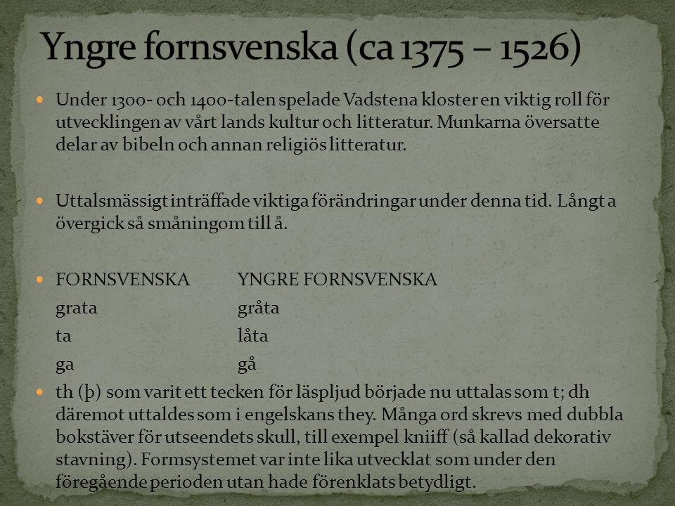 Under 1300- och 1400-talen spelade Vadstena kloster en viktig roll för utvecklingen av vårt lands kultur och litteratur. Munkarna översatte delar av b