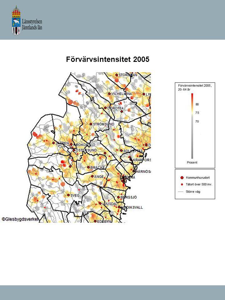 Förvärvsintensitet 2005