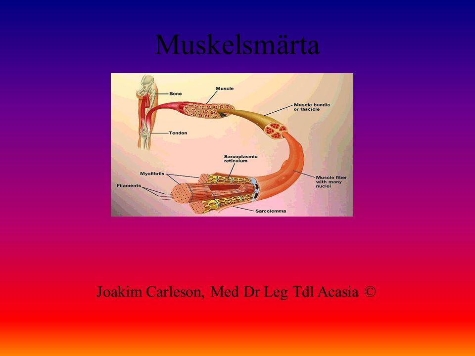 Muskelsmärta Joakim Carleson, Med Dr Leg Tdl Acasia ©