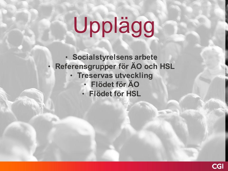 Socialstyrelsens arbete Referensgrupper för ÄO och HSL Treservas utveckling Flödet för ÄO Flödet för HSL Upplägg