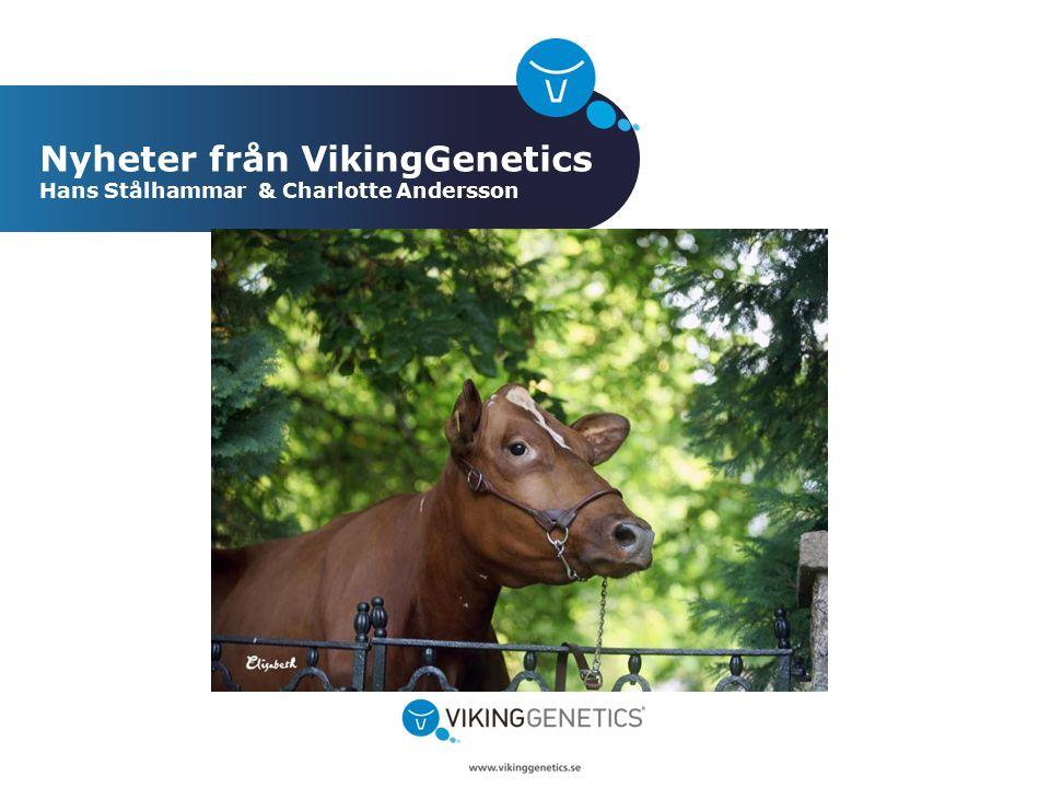 Nyheter från VikingGenetics Hans Stålhammar & Charlotte Andersson