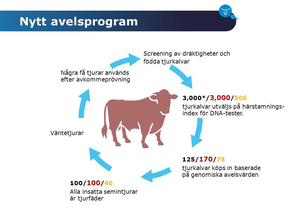 Några få tjurar används efter avkommeprövning Screening av dräktigheter och födda tjurkalvar 3,000*/ 3,000 /500 tjurkalvar utväljs på härstamnings- in