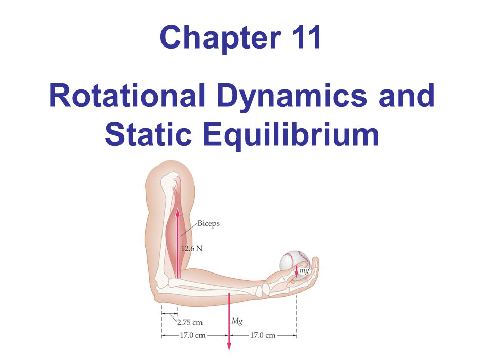 Chapter 11 Rotational Dynamics and Static Equilibrium