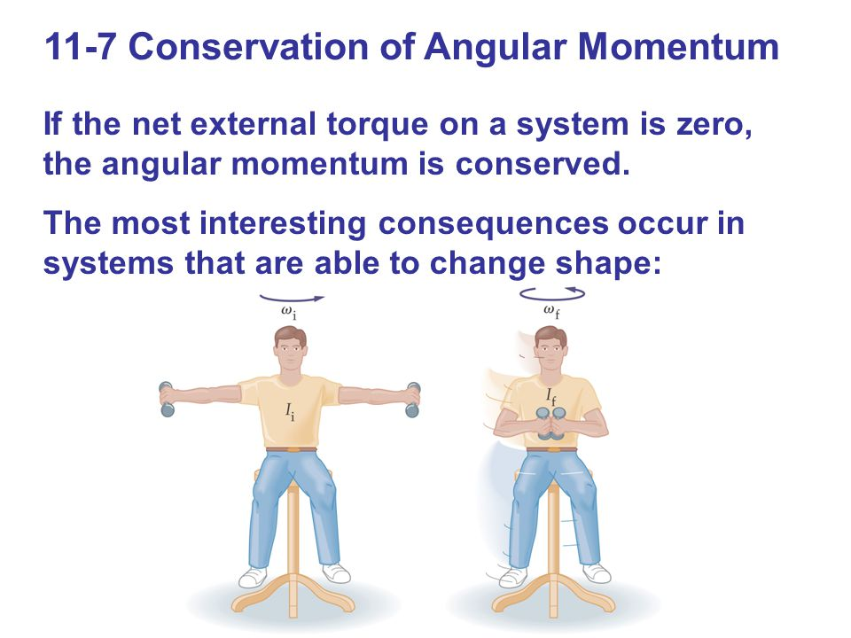 11-7 Conservation of Angular Momentum If the net external torque on a system is zero, the angular momentum is conserved. The most interesting conseque