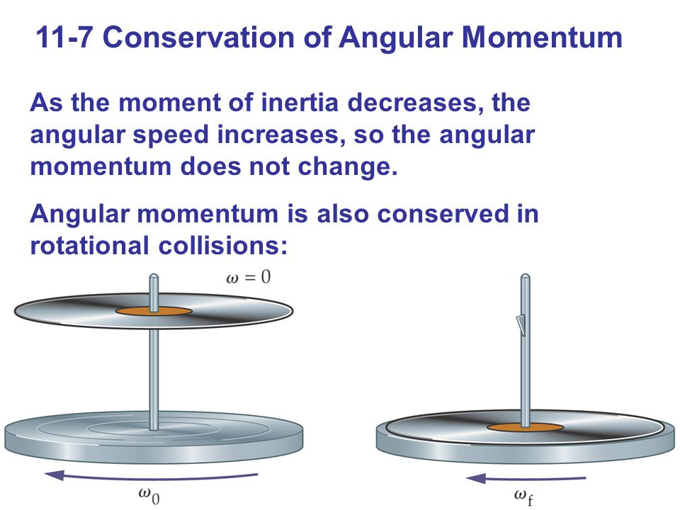 11-7 Conservation of Angular Momentum As the moment of inertia decreases, the angular speed increases, so the angular momentum does not change. Angula