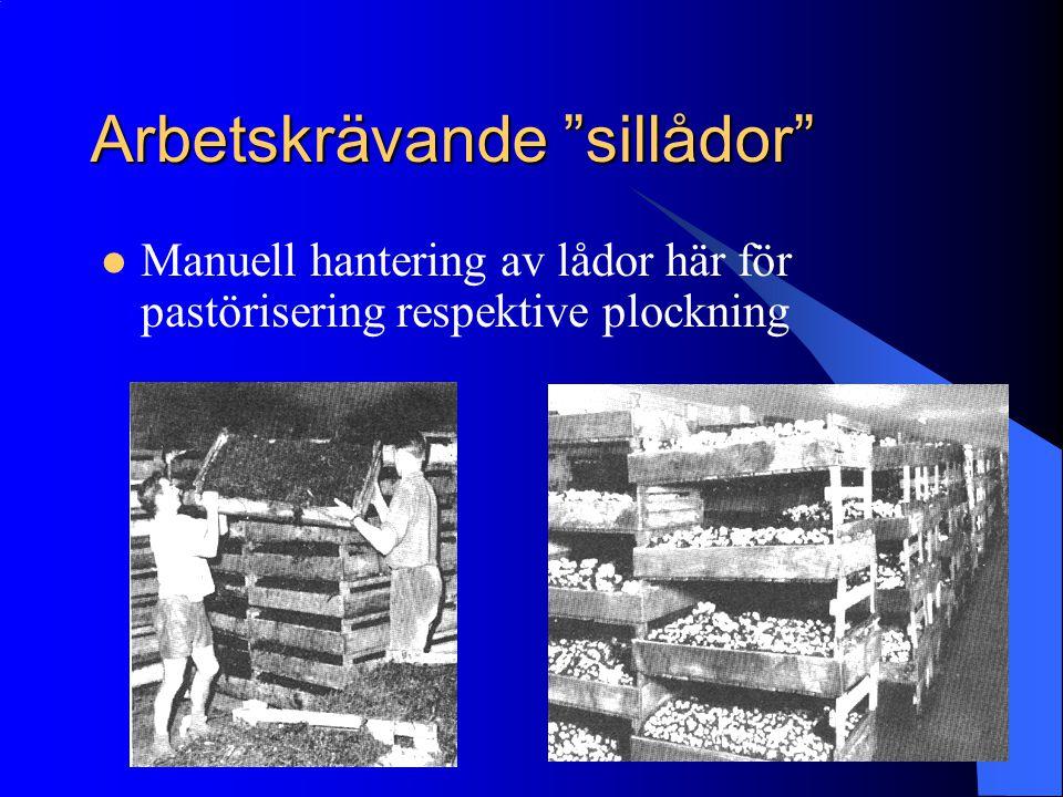 """Arbetskrävande """"sillådor"""" Manuell hantering av lådor här för pastörisering respektive plockning"""