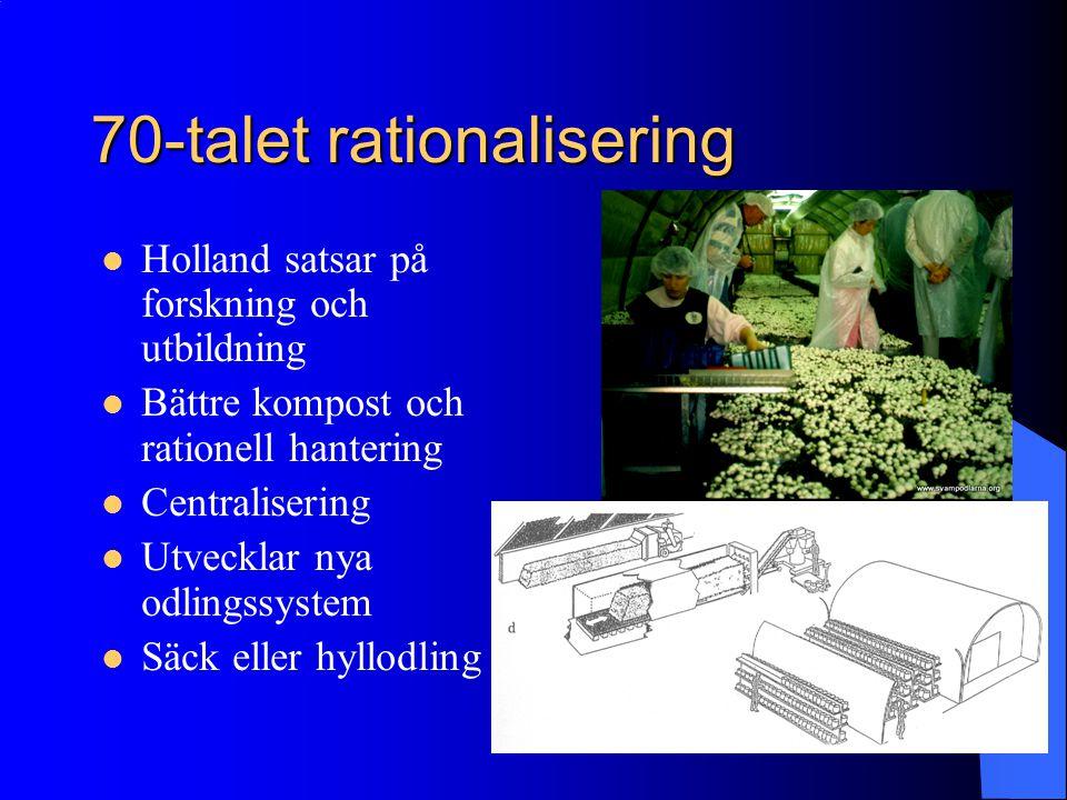 70-talet rationalisering Holland satsar på forskning och utbildning Bättre kompost och rationell hantering Centralisering Utvecklar nya odlingssystem