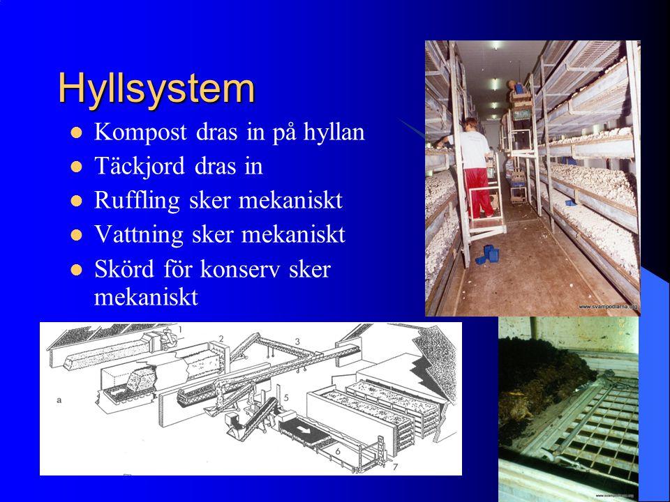 Hyllsystem Kompost dras in på hyllan Täckjord dras in Ruffling sker mekaniskt Vattning sker mekaniskt Skörd för konserv sker mekaniskt