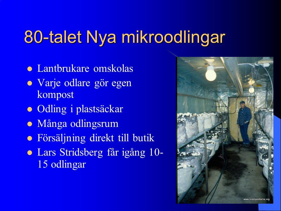 80-talet Nya mikroodlingar Lantbrukare omskolas Varje odlare gör egen kompost Odling i plastsäckar Många odlingsrum Försäljning direkt till butik Lars