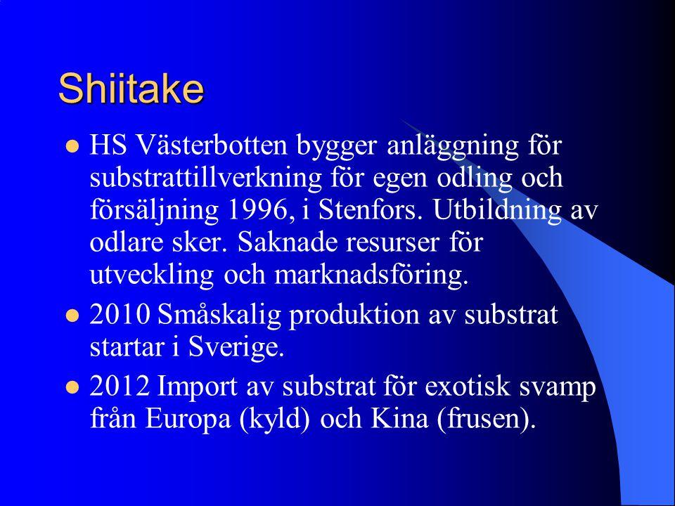 Shiitake HS Västerbotten bygger anläggning för substrattillverkning för egen odling och försäljning 1996, i Stenfors. Utbildning av odlare sker. Sakna