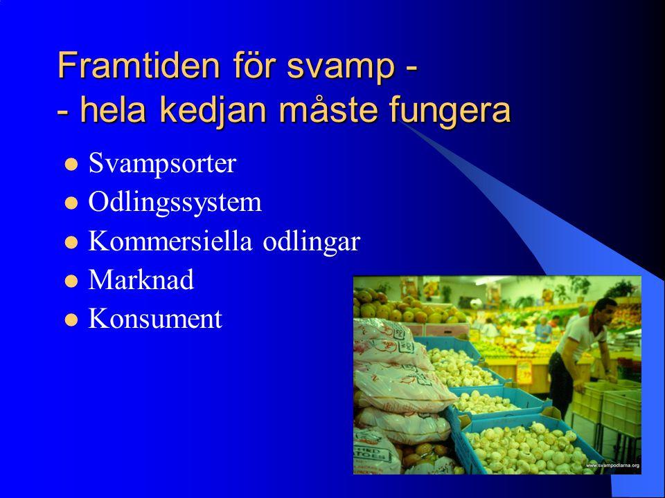 Framtiden för svamp - - hela kedjan måste fungera Svampsorter Odlingssystem Kommersiella odlingar Marknad Konsument