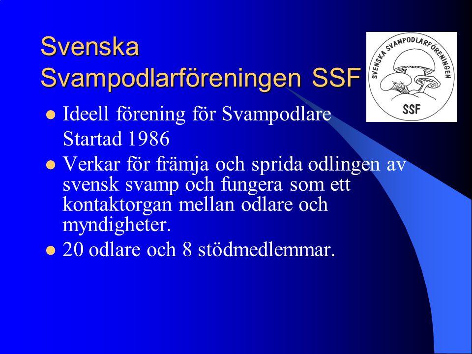 Svenska Svampodlarföreningen SSF Ideell förening för Svampodlare Startad 1986 Verkar för främja och sprida odlingen av svensk svamp och fungera som et