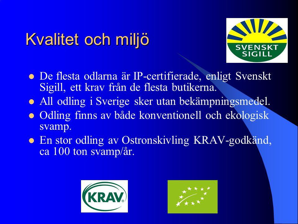 Kvalitet och miljö De flesta odlarna är IP-certifierade, enligt Svenskt Sigill, ett krav från de flesta butikerna. All odling i Sverige sker utan bekä