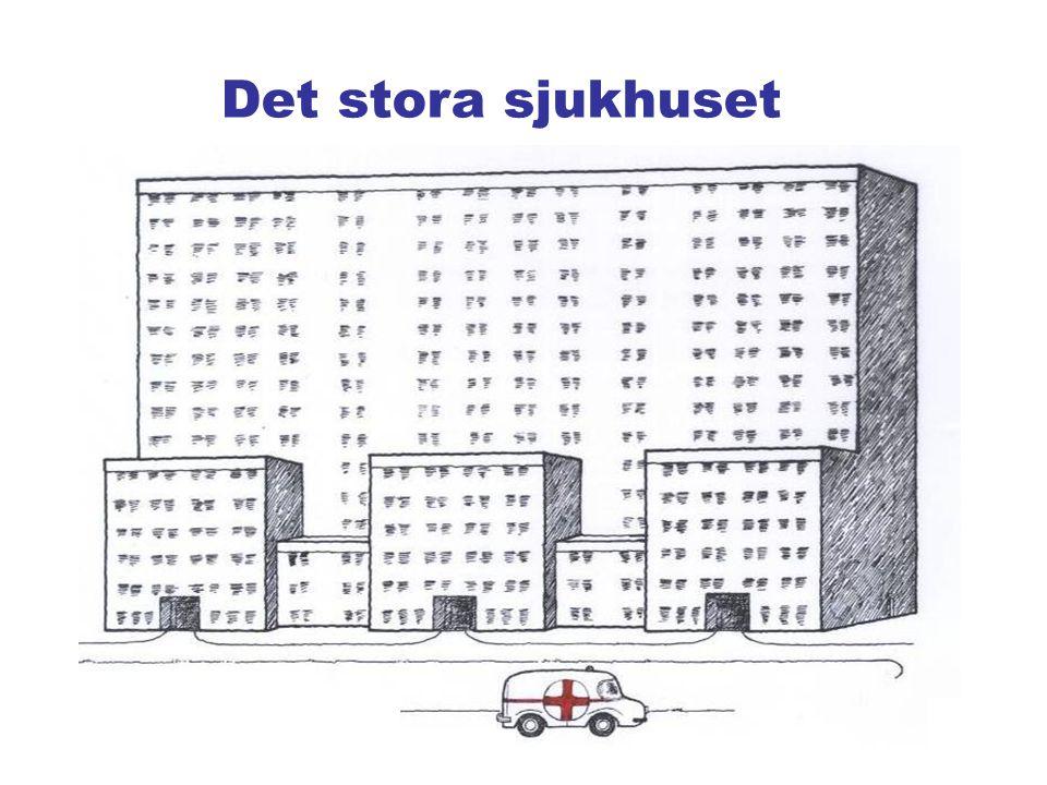 Det stora sjukhuset