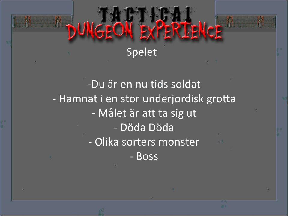 Spelet -Du är en nu tids soldat - Hamnat i en stor underjordisk grotta - Målet är att ta sig ut - Döda Döda - Olika sorters monster - Boss