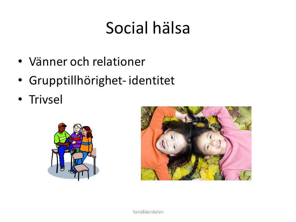 Social hälsa Vänner och relationer Grupptillhörighet- identitet Trivsel Sandåkerskolan