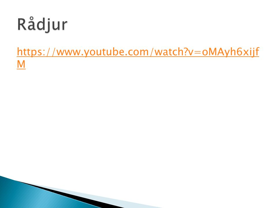 https://www.youtube.com/watch?v=oMAyh6xijf M