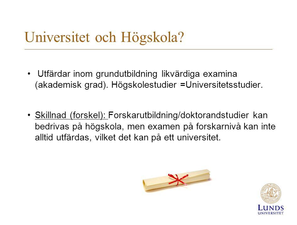 Universitet och Högskola? Utfärdar inom grundutbildning likvärdiga examina (akademisk grad). Högskolestudier =Universitetsstudier. Skillnad (forskel):