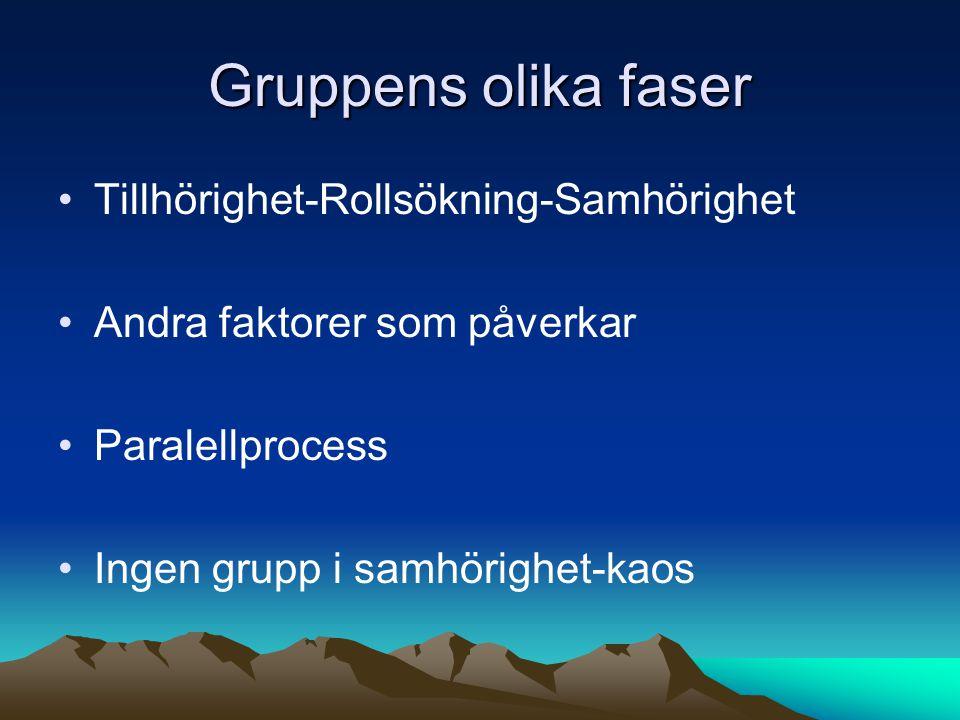Gruppens olika faser Tillhörighet-Rollsökning-Samhörighet Andra faktorer som påverkar Paralellprocess Ingen grupp i samhörighet-kaos