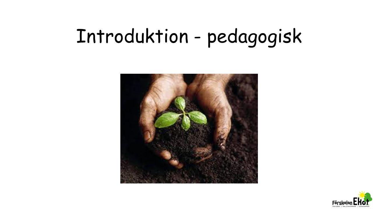 BIBAS (Pärm 3) Du som pedagog möter barn utifrån deras förutsättningar och behov.