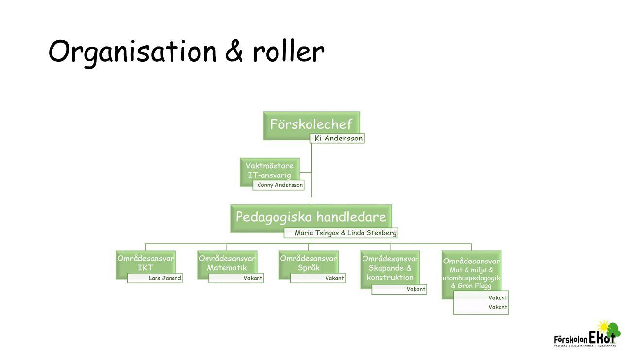Organisation & roller