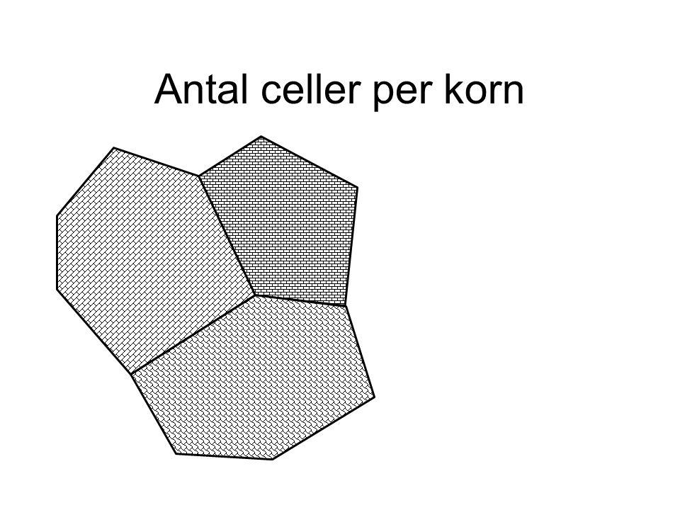 Antal celler per korn
