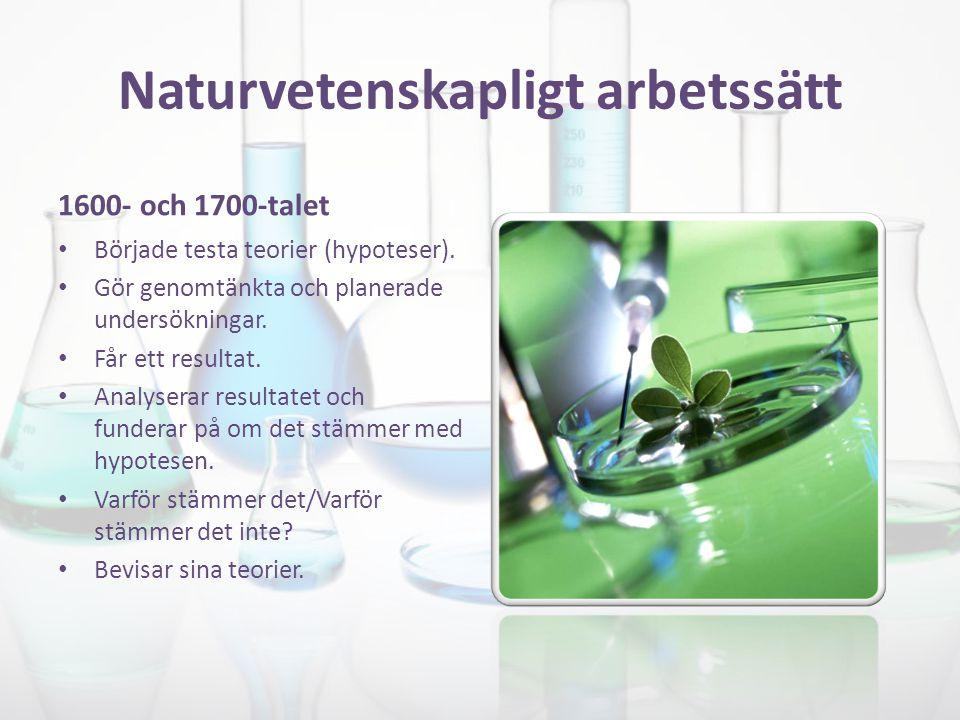 Naturvetenskapligt arbetssätt Frågeställning och hypotes Planeringen av undersökning Genomföra sin undersökning Resultat Analysera och dra slutsatser