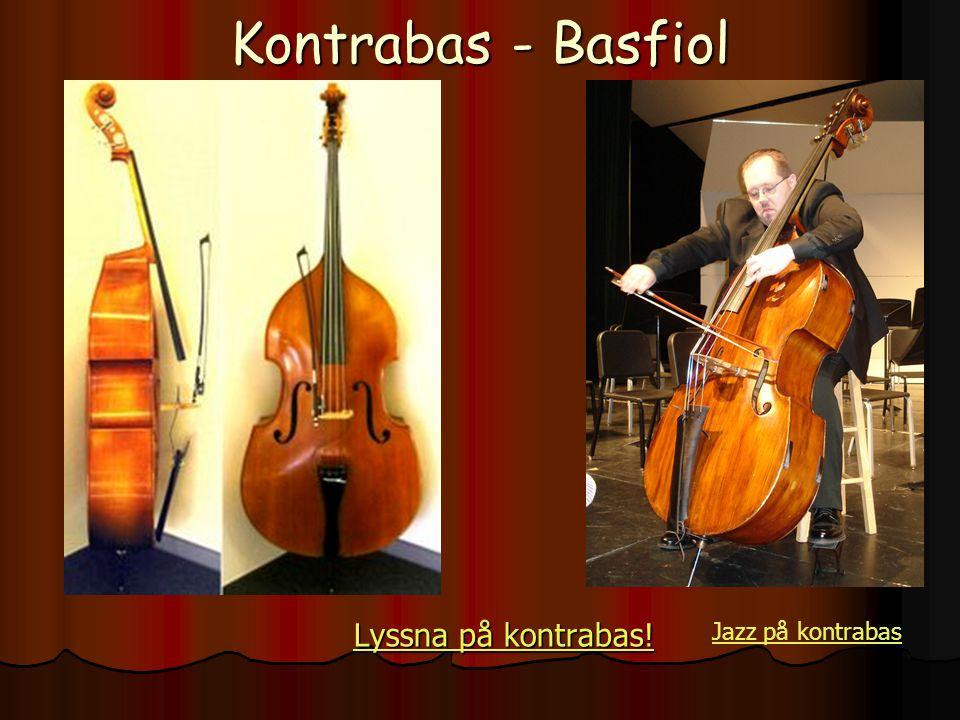 Kontrabas - Basfiol Lyssna på kontrabas! Lyssna på kontrabas! Jazz på kontrabas