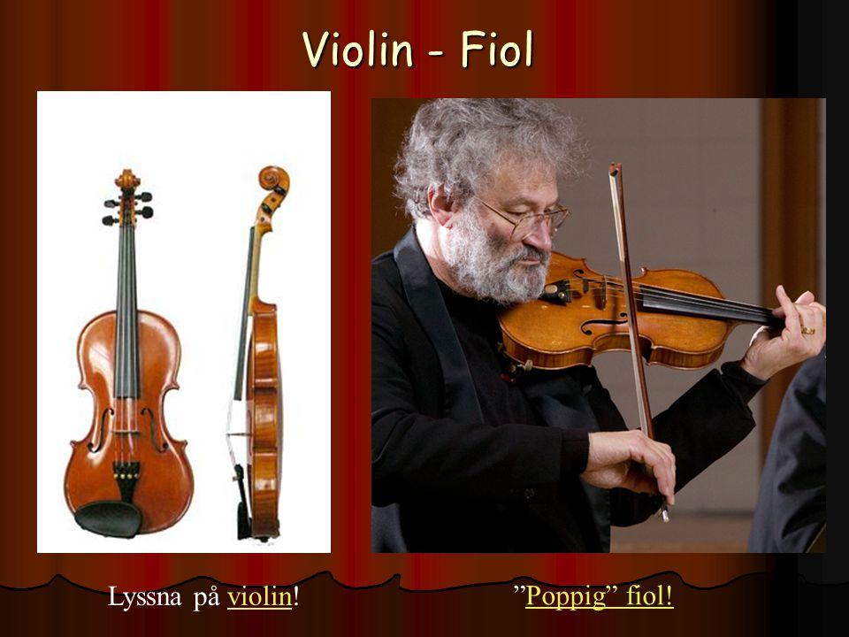 Violin - Fiol Lyssna på violin!violin Poppig fiol!Poppig fiol!
