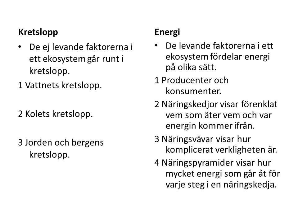 Kretslopp De ej levande faktorerna i ett ekosystem går runt i kretslopp. 1 Vattnets kretslopp. 2 Kolets kretslopp. 3 Jorden och bergens kretslopp. Ene