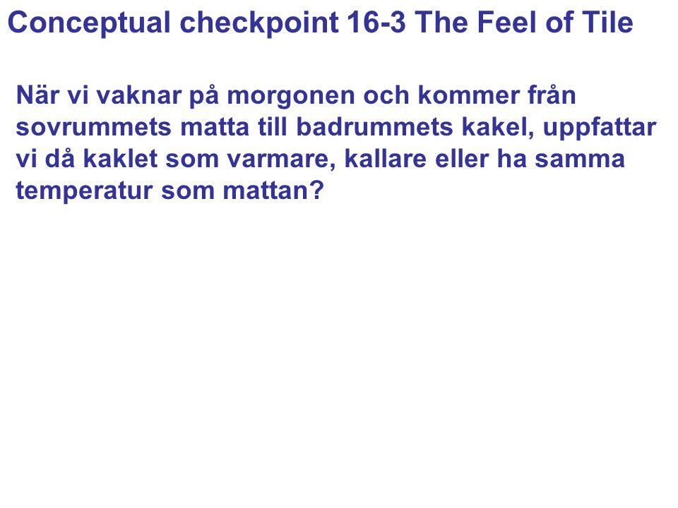 Conceptual checkpoint 16-3 The Feel of Tile När vi vaknar på morgonen och kommer från sovrummets matta till badrummets kakel, uppfattar vi då kaklet som varmare, kallare eller ha samma temperatur som mattan