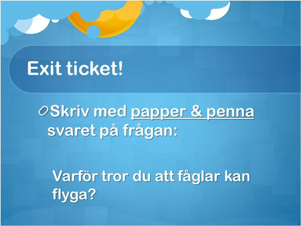 Exit ticket! Skriv med papper & penna svaret på frågan: Varför tror du att fåglar kan flyga?