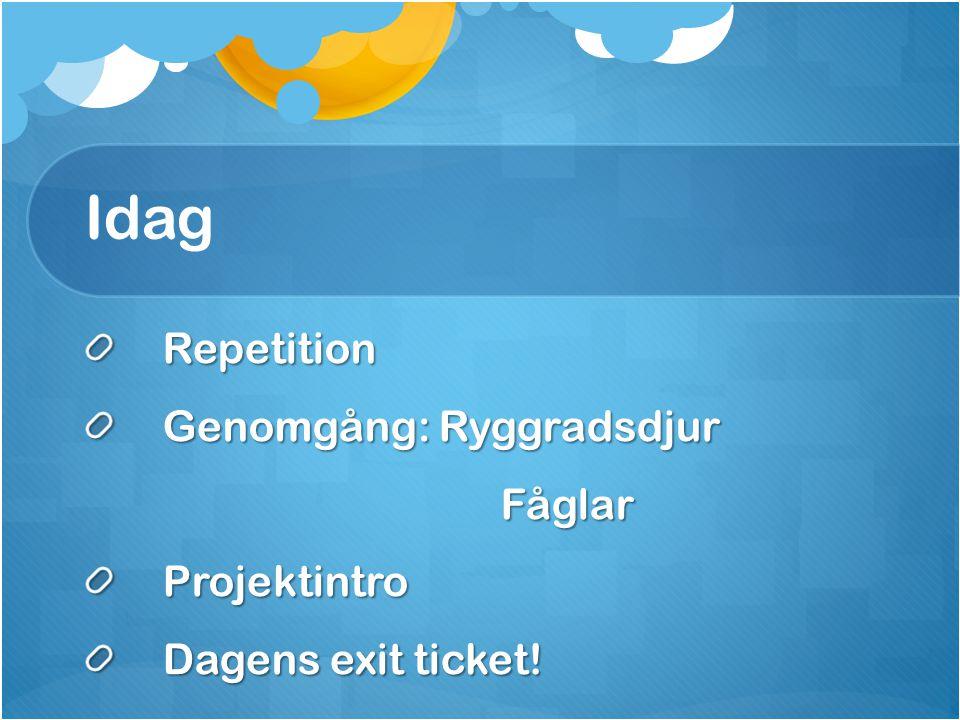 Idag Repetition Genomgång: Ryggradsdjur Fåglar FåglarProjektintro Dagens exit ticket!