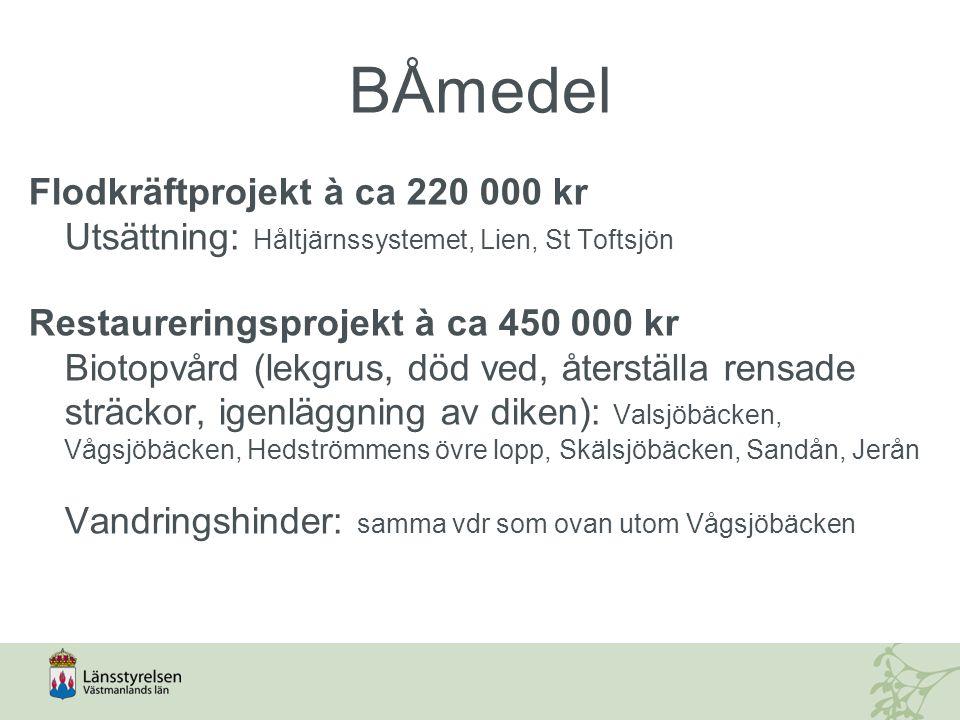 BÅmedel, vandringshinder Valsjöbäcken2 dammar Hedströmmen1 damm (Nedre Borgfors) Skälsjöbäcken3 dammar, 1 vägtrumma Sandån1 damm