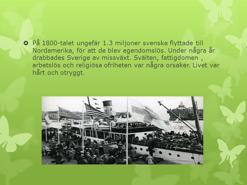  På 1800-talet ungefär 1.3 miljoner svenska flyttade till Nordamerika, för att de blev egendomslös. Under några år drabbades Sverige av missväxt. Svä