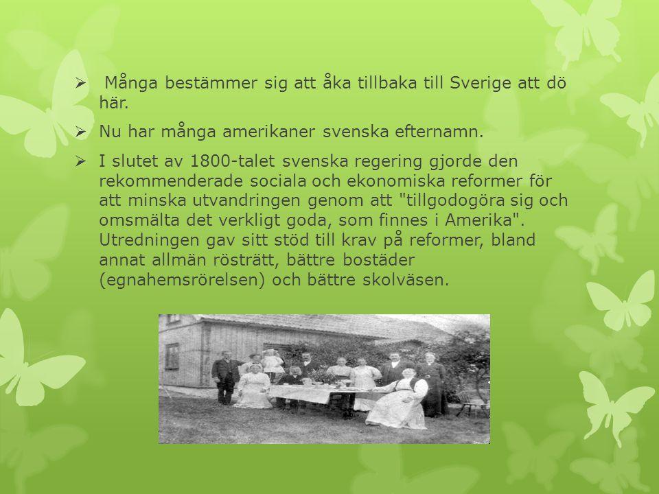  Många bestämmer sig att åka tillbaka till Sverige att dö här.  Nu har många amerikaner svenska efternamn.  I slutet av 1800-talet svenska regering