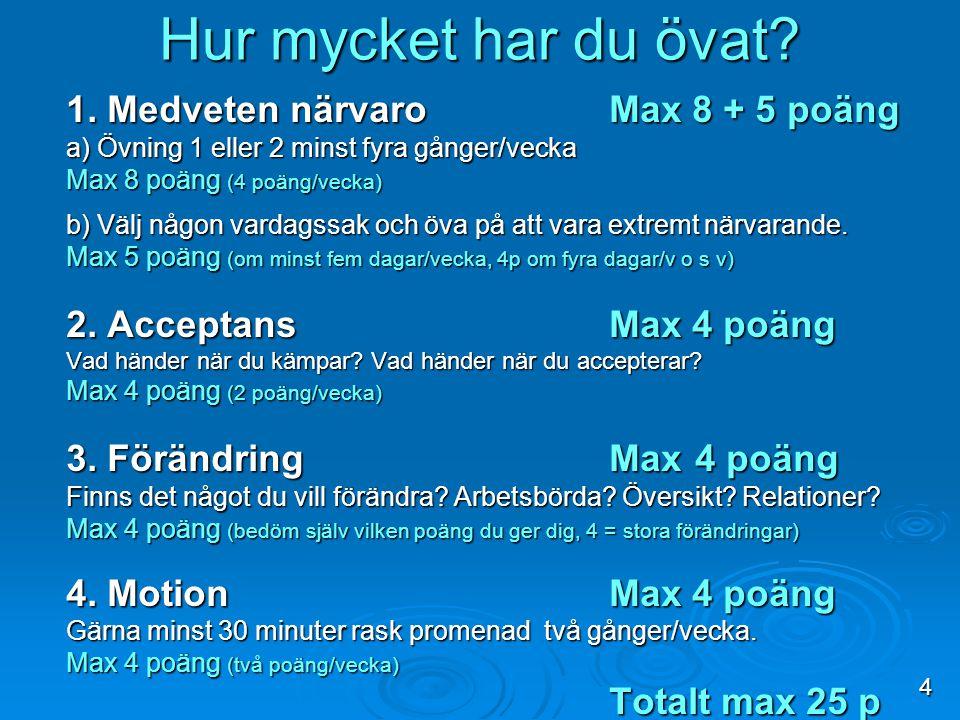Övat hemma NamnCD (max 8 p) Närvaro (max 5 p) Acceptans (max 4 p) Förändra Motion Totalt (max 25 p) 5:1